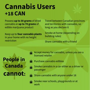 Infographic showing the cans and cannot of cannabis in the car